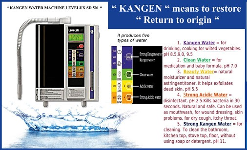 KANGEN-WATER-FILTER-PLUIT-APRIL-'12-2-Box[1]